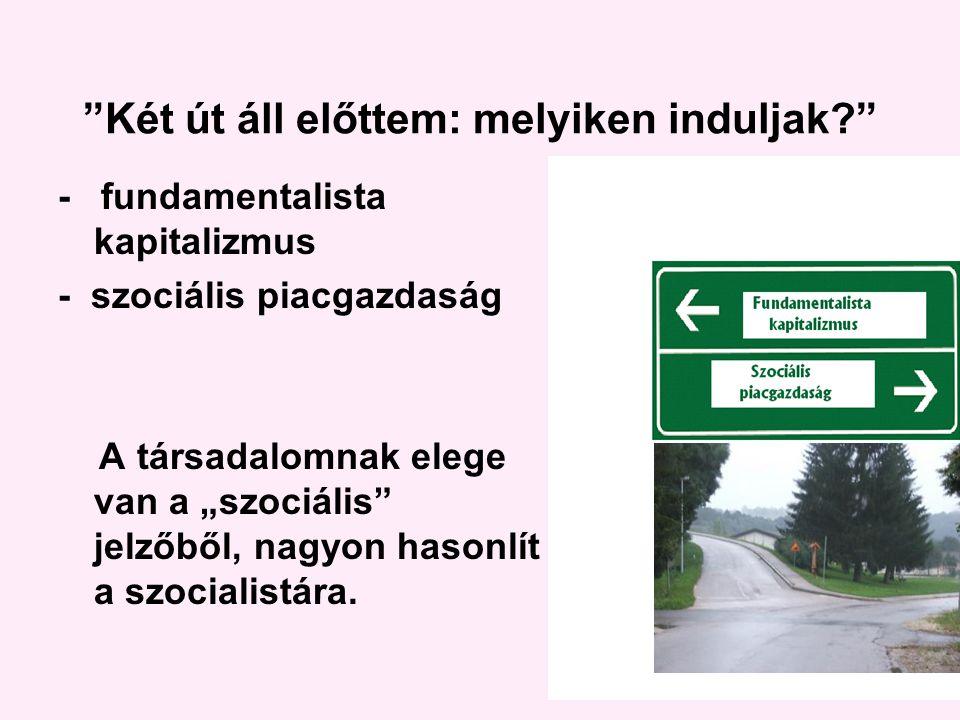 """Két út áll előttem: melyiken induljak - fundamentalista kapitalizmus - szociális piacgazdaság A társadalomnak elege van a """"szociális jelzőből, nagyon hasonlít a szocialistára."""