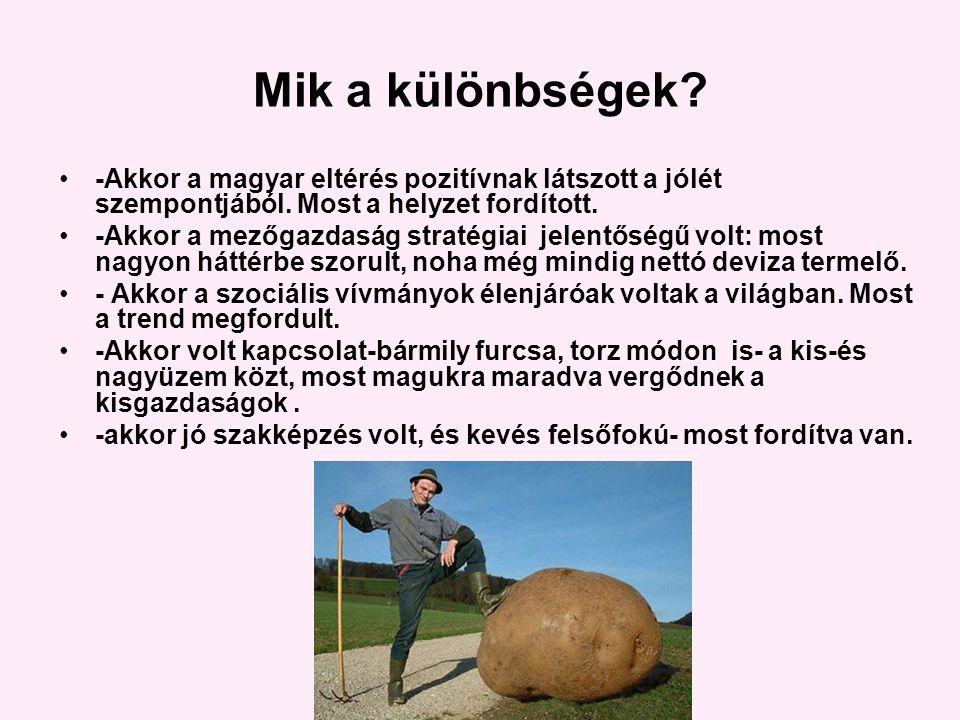 Mik a különbségek. -Akkor a magyar eltérés pozitívnak látszott a jólét szempontjából.