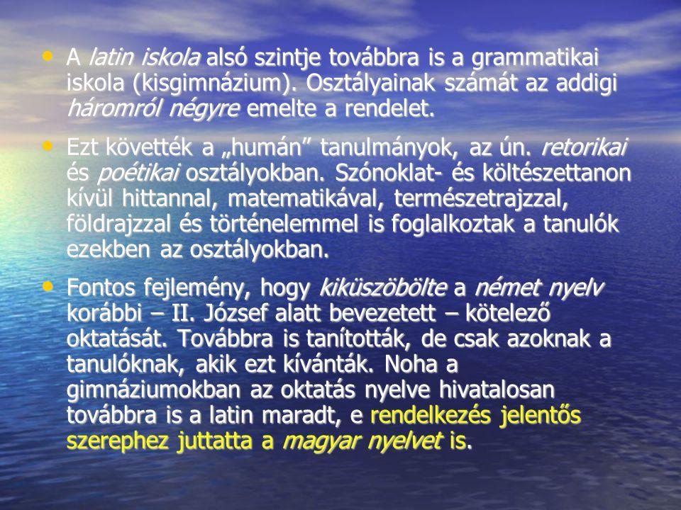 A latin iskola alsó szintje továbbra is a grammatikai iskola (kisgimnázium). Osztályainak számát az addigi háromról négyre emelte a rendelet. A latin