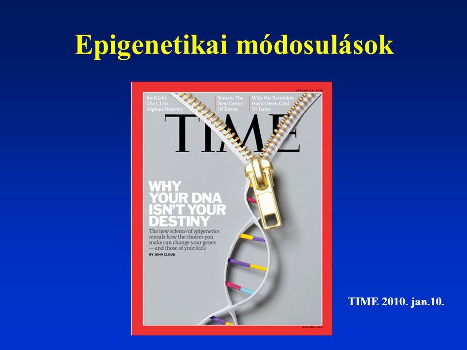 Epigenetikai módosulások TIME 2010. jan.10.