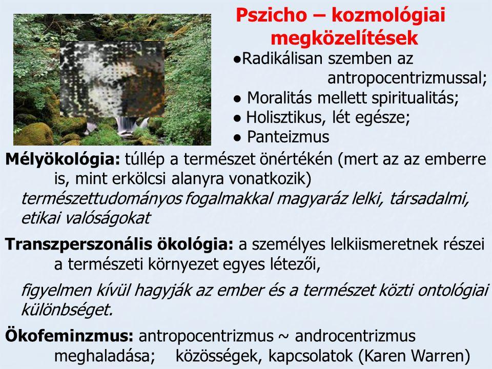 Pszicho – kozmológiai megközelítések ●Radikálisan szemben az antropocentrizmussal; ● Moralitás mellett spiritualitás; ● Holisztikus, lét egésze; ● Pan