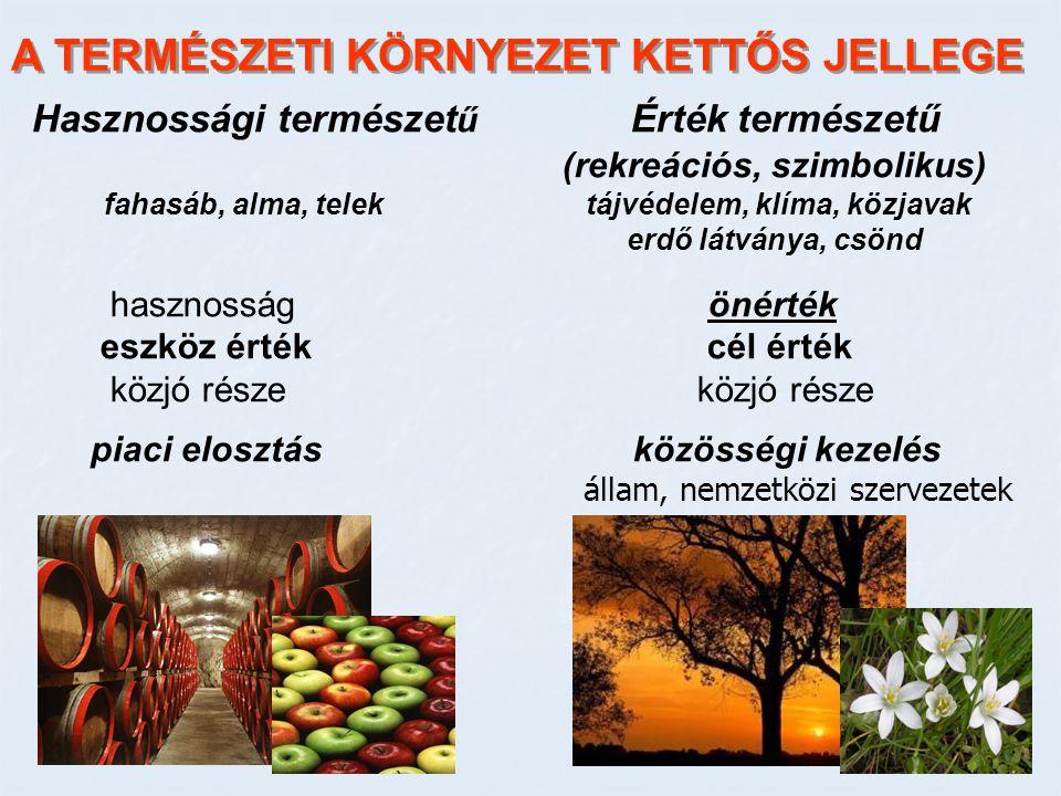 A TERMÉSZETI KÖRNYEZET KETTŐS JELLEGE Hasznossági természet ű Érték természetű (rekreációs, szimbolikus) fahasáb, alma, telek tájvédelem, klíma, közja