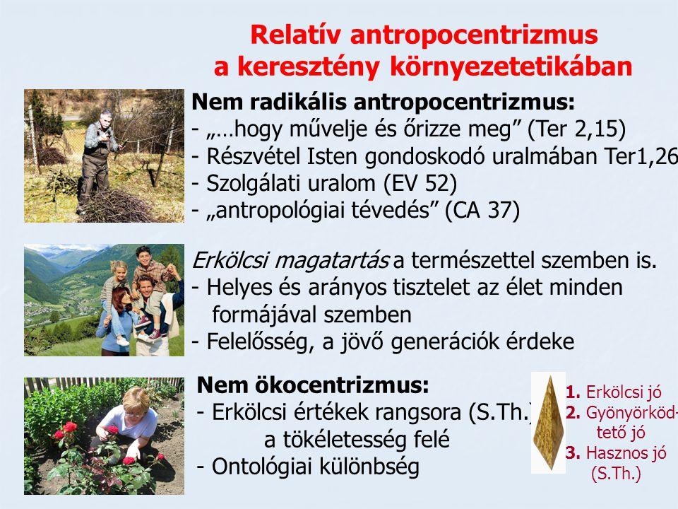 """Relatív antropocentrizmus a keresztény környezetetikában Nem radikális antropocentrizmus: - """"…hogy művelje és őrizze meg"""" (Ter 2,15) - Részvétel Isten"""