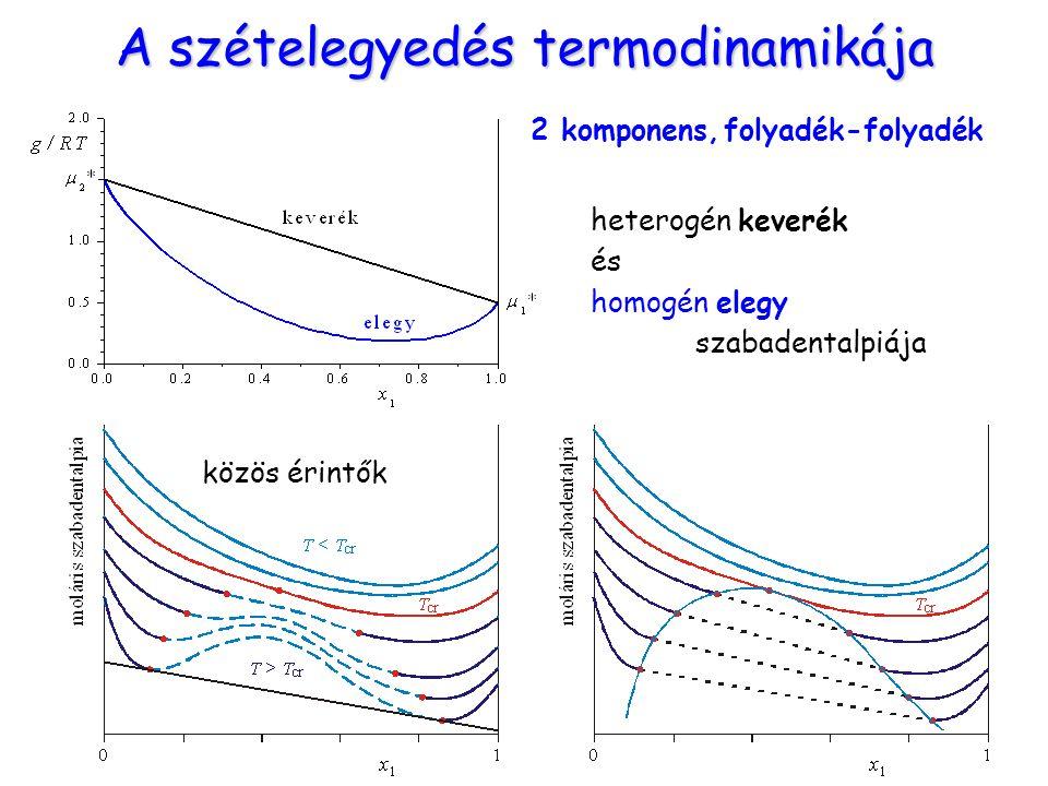 A szételegyedés termodinamikája heterogén keverék és homogén elegy szabadentalpiája közös érintők 2 komponens, folyadék-folyadék