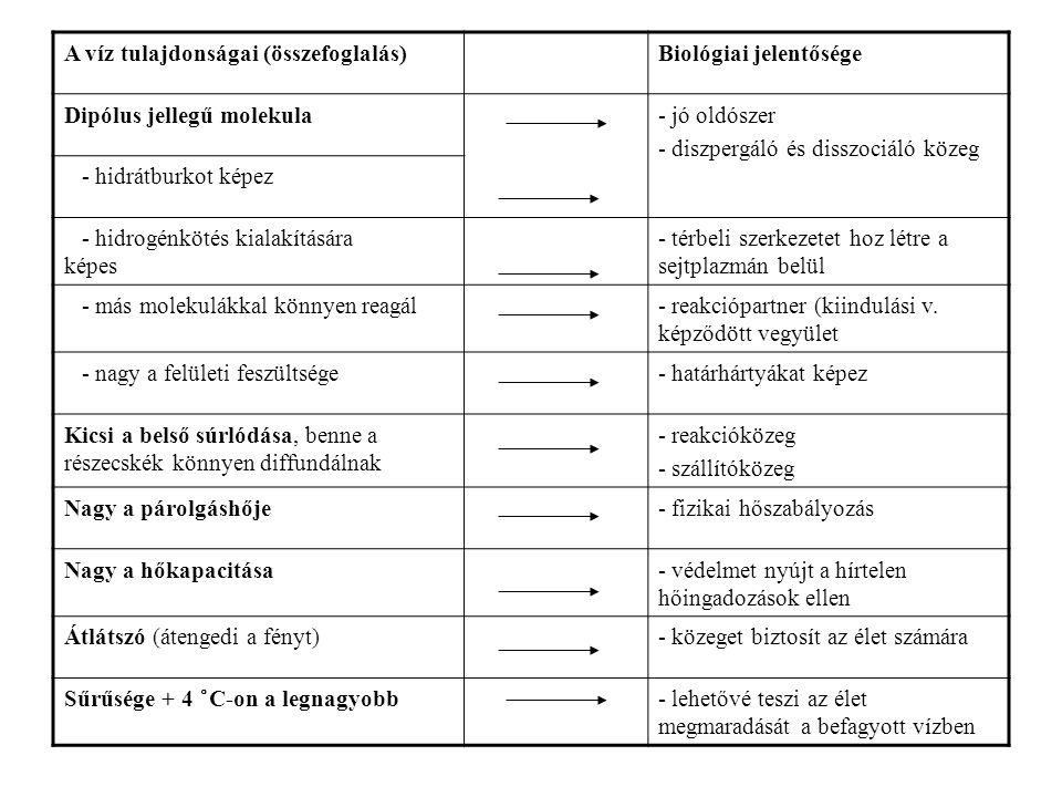 A víz tulajdonságai (összefoglalás)Biológiai jelentősége Dipólus jellegű molekula- jó oldószer - diszpergáló és disszociáló közeg - hidrátburkot képez
