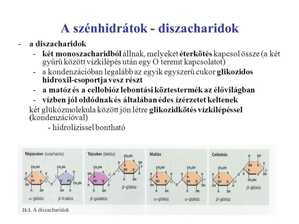 A szénhidrátok - diszacharidok -a diszacharidok -két monoszacharidból állnak, melyeket éterkötés kapcsol össze (a két gyűrű között vízkilépés után egy