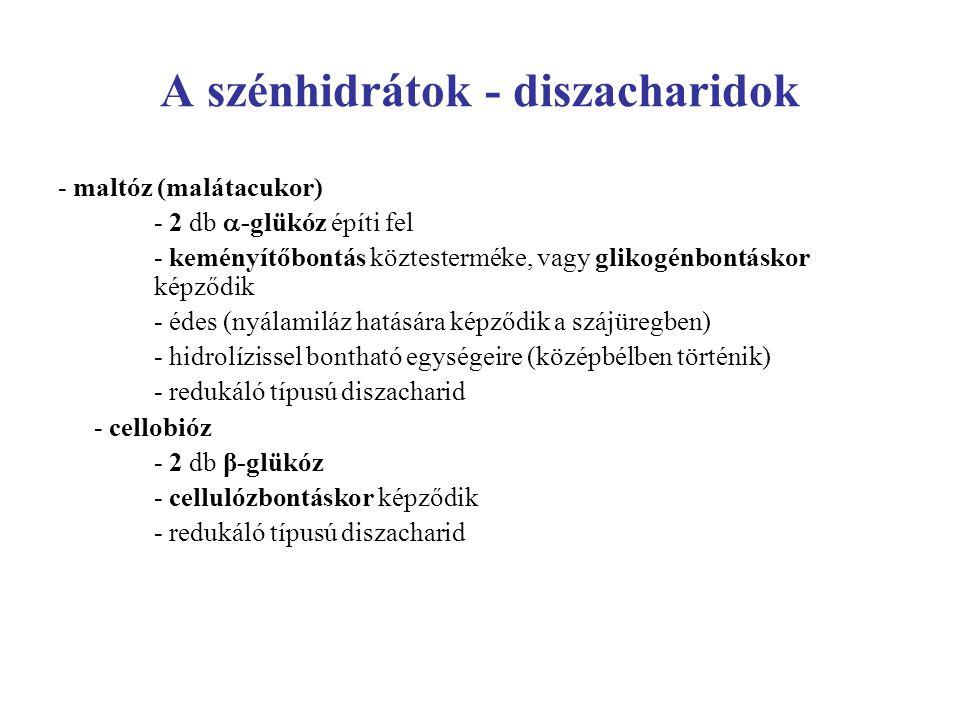 A szénhidrátok - diszacharidok - maltóz (malátacukor) - 2 db  -glükóz építi fel - keményítőbontás köztesterméke, vagy glikogénbontáskor képződik - éd