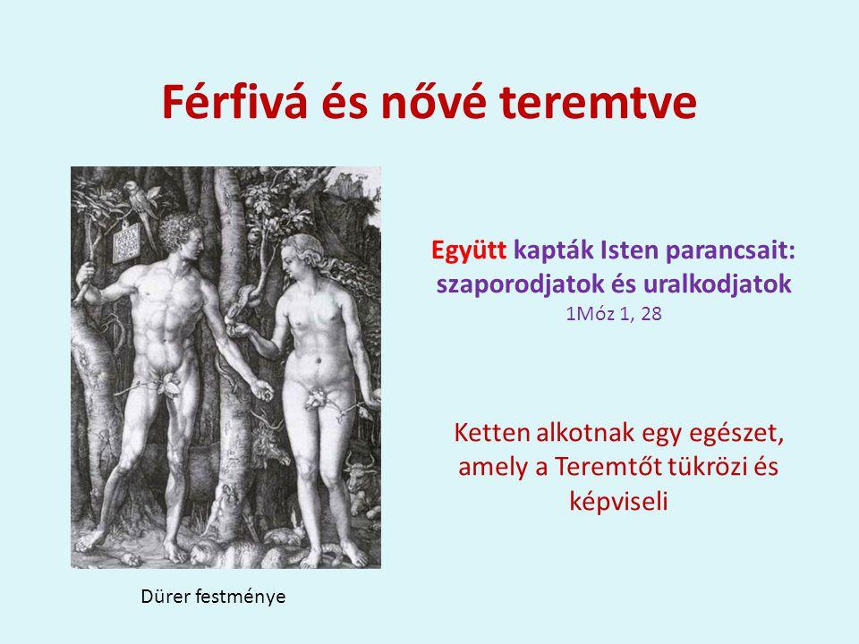 Férfivá és nővé teremtve Együtt kapták Isten parancsait: szaporodjatok és uralkodjatok 1Móz 1, 28 Dürer festménye Ketten alkotnak egy egészet, amely a Teremtőt tükrözi és képviseli