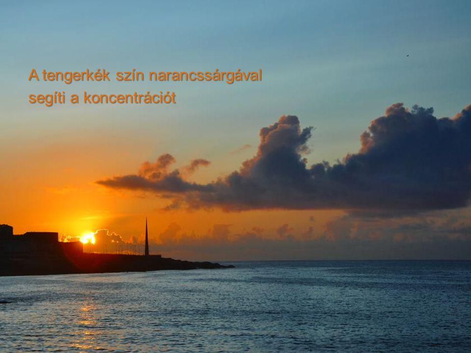 A tengerkék szín narancssárgával segíti a koncentrációt