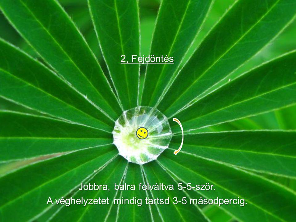 A zöld megnyugtatja az idegrendszert.