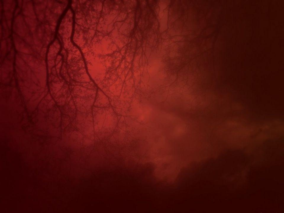 Az új évezred talánya: sötétedik vagy világosodik.