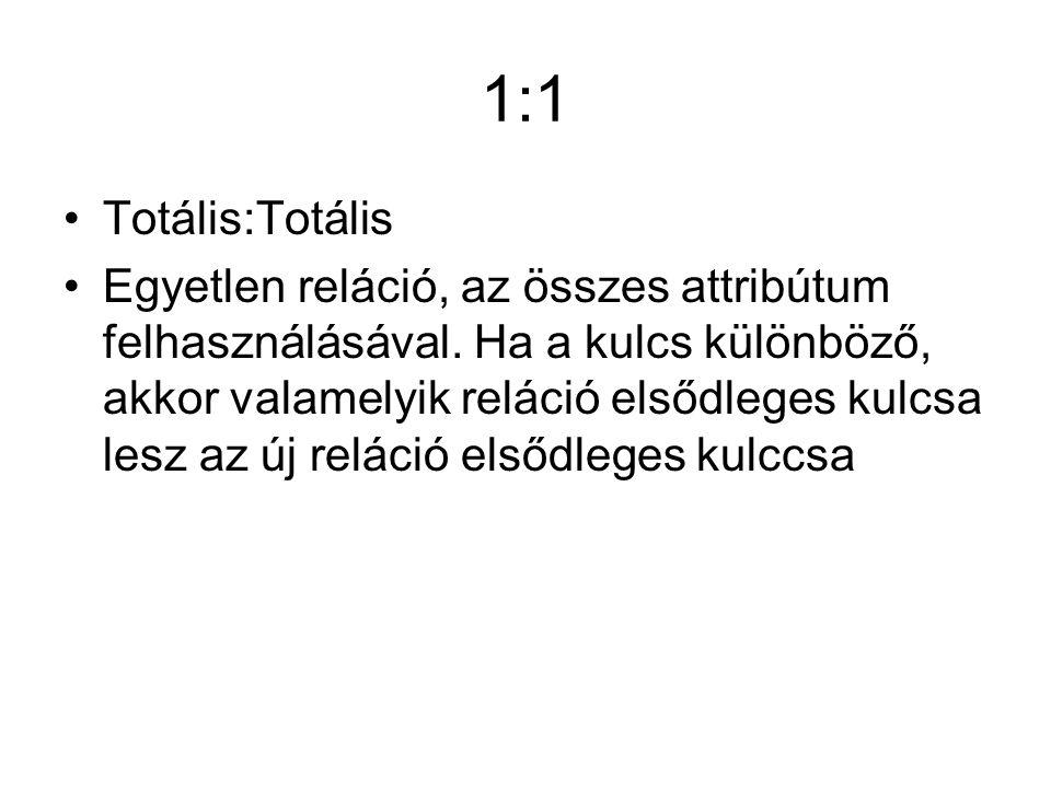 1:1 Totális:Totális Egyetlen reláció, az összes attribútum felhasználásával.