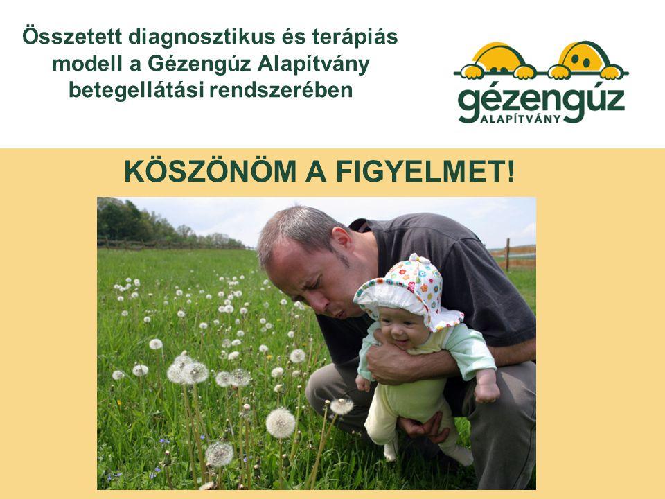 Összetett diagnosztikus és terápiás modell a Gézengúz Alapítvány betegellátási rendszerében KÖSZÖNÖM A FIGYELMET!
