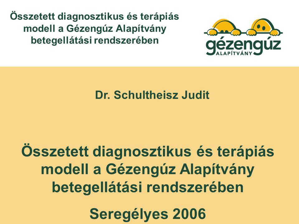 Dr. Schultheisz Judit Összetett diagnosztikus és terápiás modell a Gézengúz Alapítvány betegellátási rendszerében Seregélyes 2006