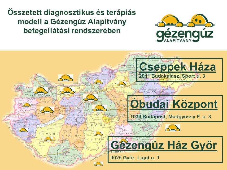 Összetett diagnosztikus és terápiás modell a Gézengúz Alapítvány betegellátási rendszerében Gézengúz Ház Győr 9025 Győr, Liget u.