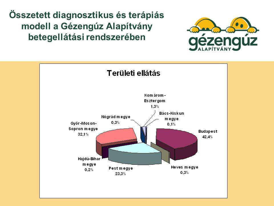 Összetett diagnosztikus és terápiás modell a Gézengúz Alapítvány betegellátási rendszerében