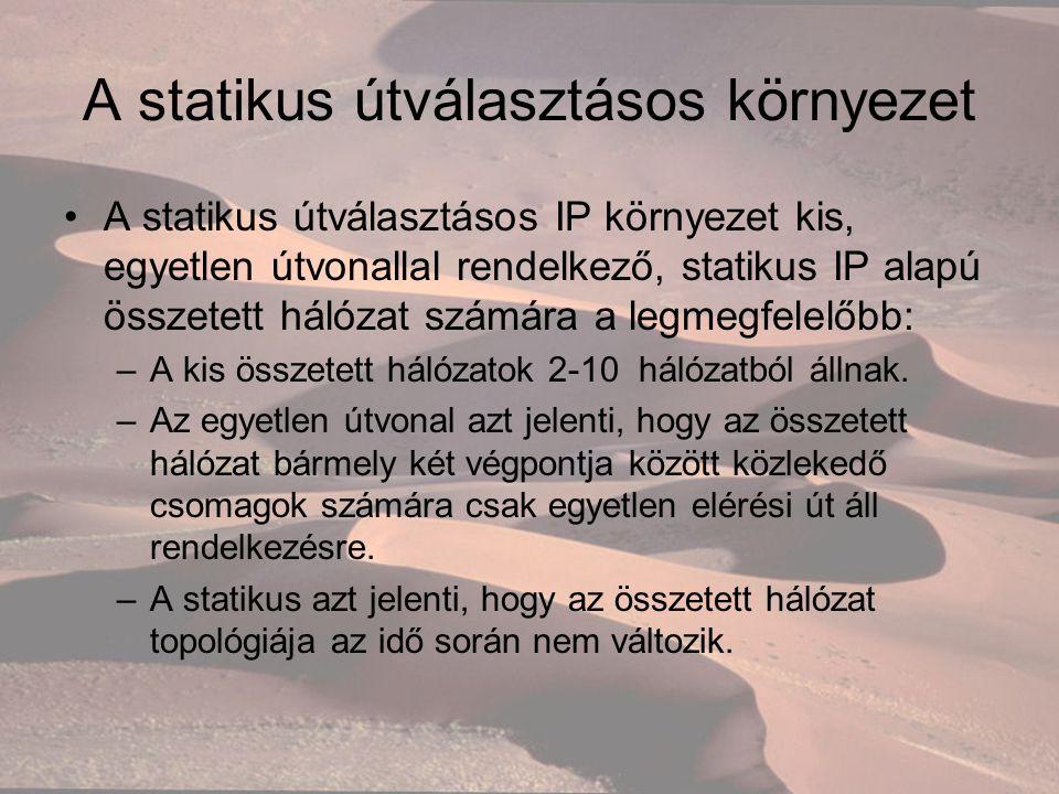 A statikus útválasztásos környezet A statikus útválasztásos IP környezet kis, egyetlen útvonallal rendelkező, statikus IP alapú összetett hálózat számára a legmegfelelőbb: –A kis összetett hálózatok 2-10 hálózatból állnak.