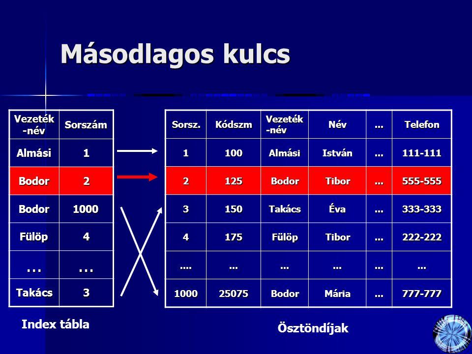 Másodlagos kulcs Vezeték -név Sorszám Almási1 Bodor2 Bodor1000 Fülöp4...... Takács3Sorsz.Kódszm Név...Telefon1100AlmásiIstván...111-111 2125BodorTibor