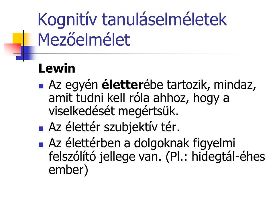 Kognitív tanuláselméletek Mezőelmélet Lewin Az egyén életterébe tartozik, mindaz, amit tudni kell róla ahhoz, hogy a viselkedését megértsük. Az életté