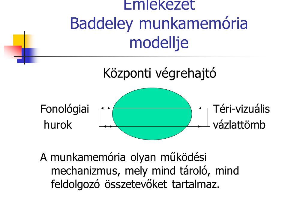 Emlékezet Baddeley munkamemória modellje Központi végrehajtó Fonológiai Téri-vizuális hurokvázlattömb A munkamemória olyan működési mechanizmus, mely