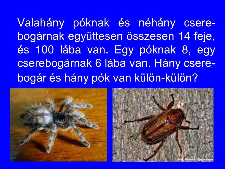 Valahány póknak és néhány csere- bogárnak együttesen összesen 14 feje, és 100 lába van. Egy póknak 8, egy cserebogárnak 6 lába van. Hány csere- bogár