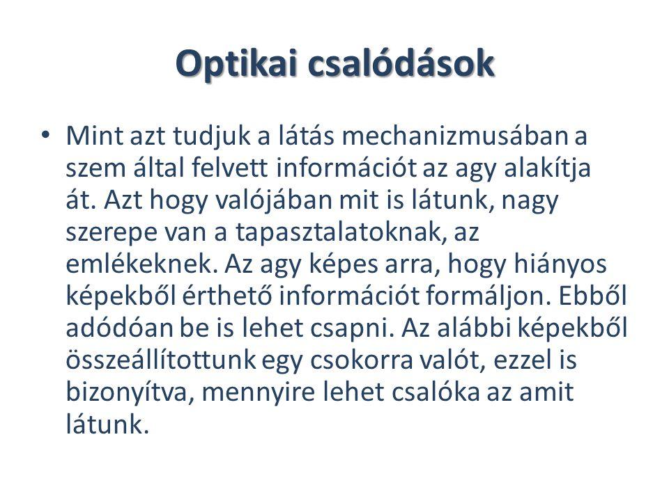 Optikai csalódások Mint azt tudjuk a látás mechanizmusában a szem által felvett információt az agy alakítja át. Azt hogy valójában mit is látunk, nagy