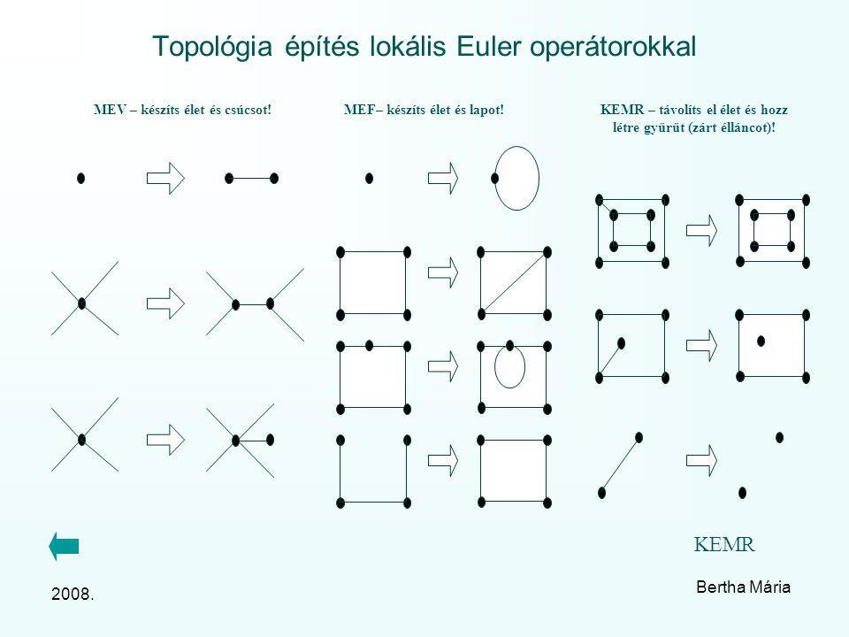 2008. Bertha Mária Topológia építés lokális Euler operátorokkal MEV – készíts élet és csúcsot.