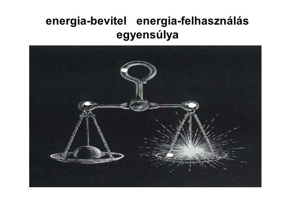 energia-bevitel energia-felhasználás egyensúlya