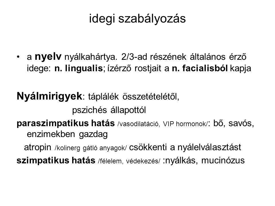 idegi szabályozás a nyelv nyálkahártya.2/3-ad részének általános érző idege: n.