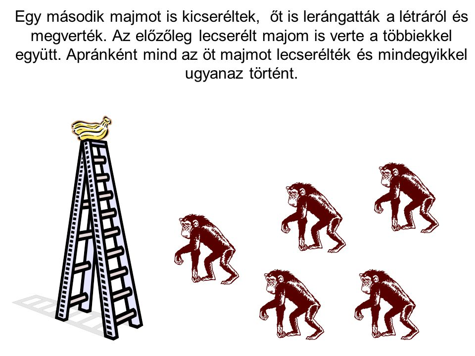 Egy második majmot is kicseréltek, őt is lerángatták a létráról és megverték. Az előzőleg lecserélt majom is verte a többiekkel együtt. Apránként mind