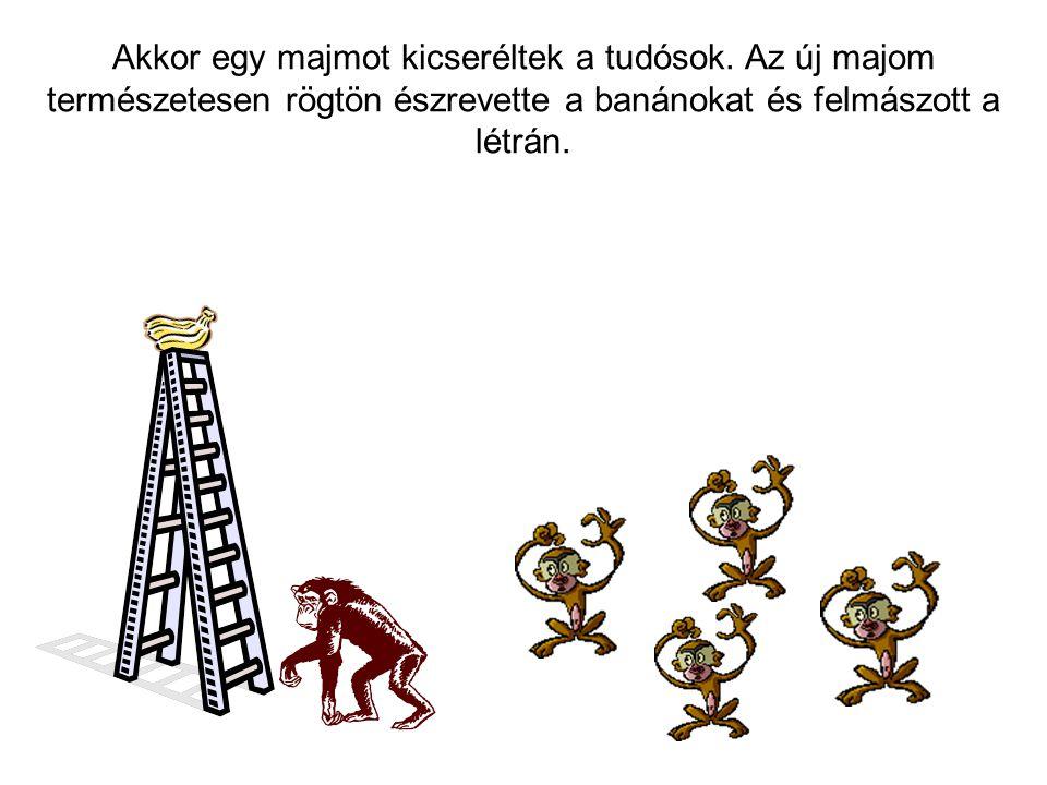 Akkor egy majmot kicseréltek a tudósok. Az új majom természetesen rögtön észrevette a banánokat és felmászott a létrán.