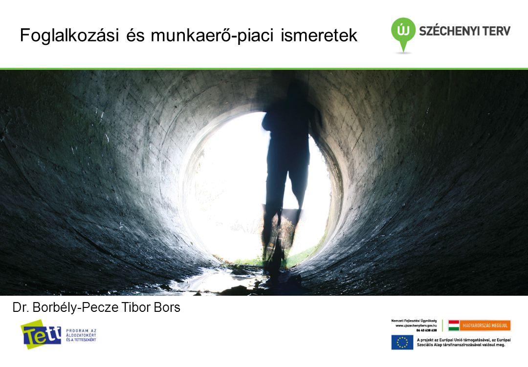 Foglalkozási és munkaerő-piaci ismeretek Dr. Borbély-Pecze Tibor Bors
