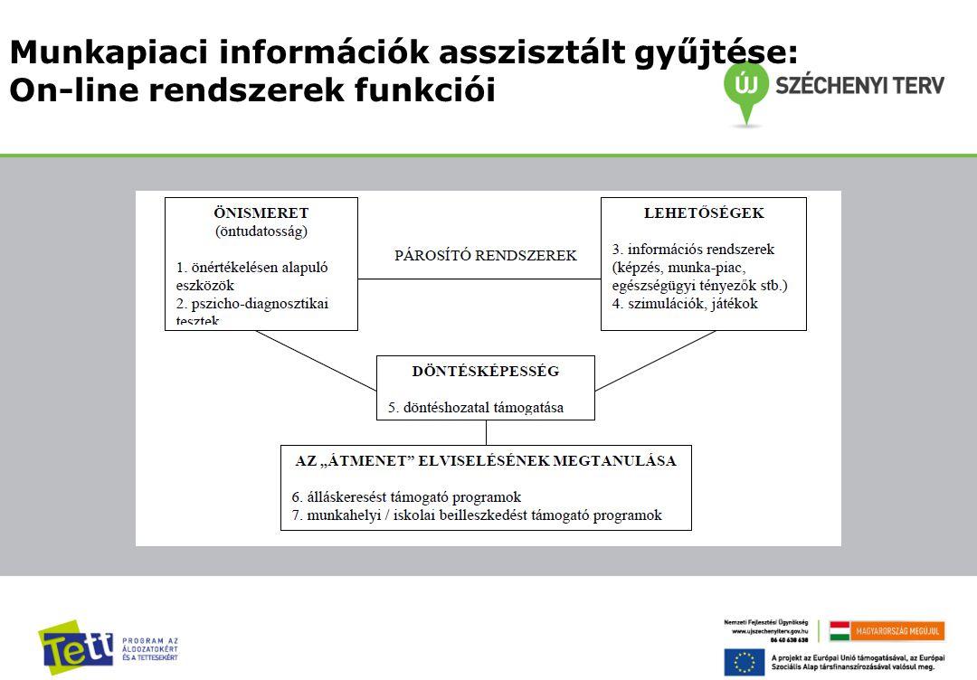 Munkapiaci információk asszisztált gyűjtése: On-line rendszerek funkciói