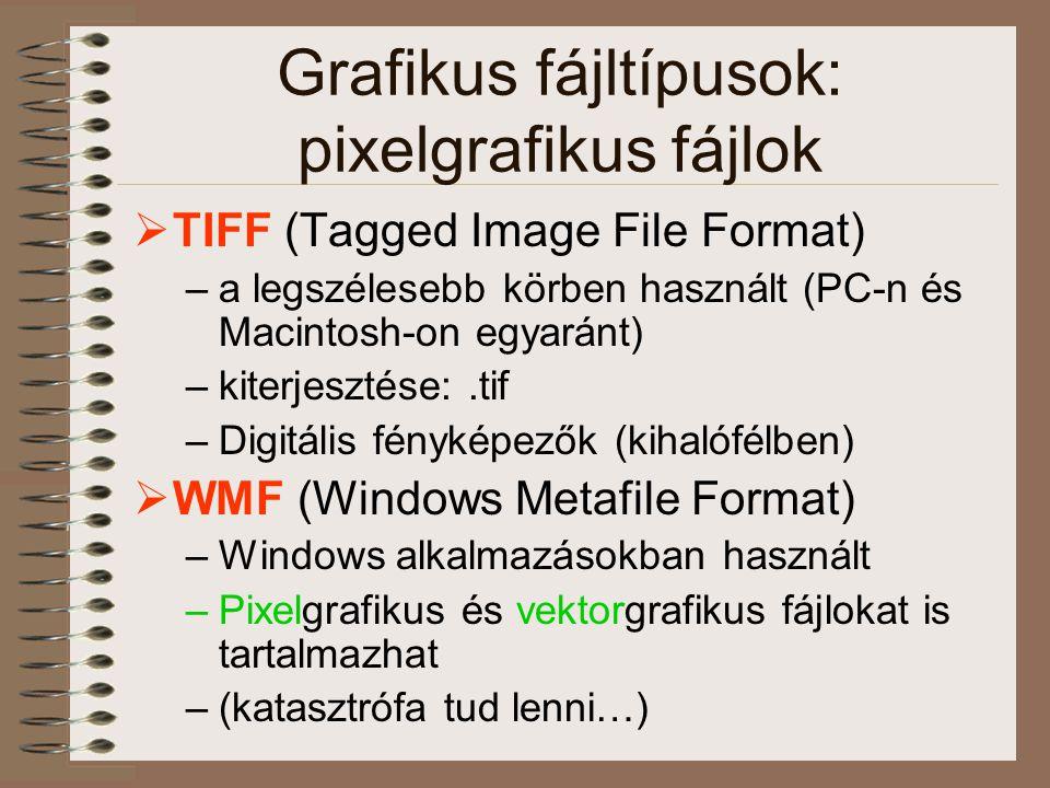Grafikus fájltípusok: pixelgrafikus fájlok  TIFF (Tagged Image File Format) –a legszélesebb körben használt (PC-n és Macintosh-on egyaránt) –kiterjes