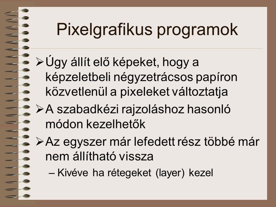 Grafikus fájltípusok: pixelgrafikus fájlok  BMP –Az MS Windows által használt formátum  GIF (Grafics Interchange Format) – a WWW-n használt, tömörítést is tartalmaz –Vonalas rajzokhoz, homogén felületekhez ideális  PCX –PC-ken használt, sok grafikus program, szkenner és fax is támogatja