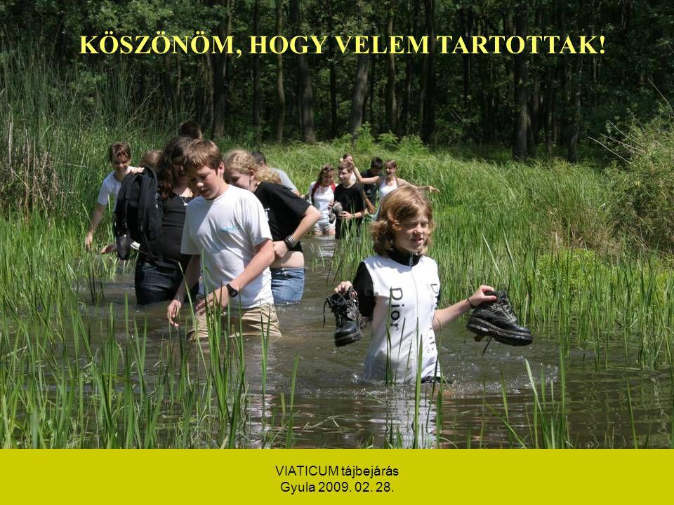 VIATICUM tájbejárás Gyula 2009. 02. 28. KÖSZÖNÖM, HOGY VELEM TARTOTTAK!
