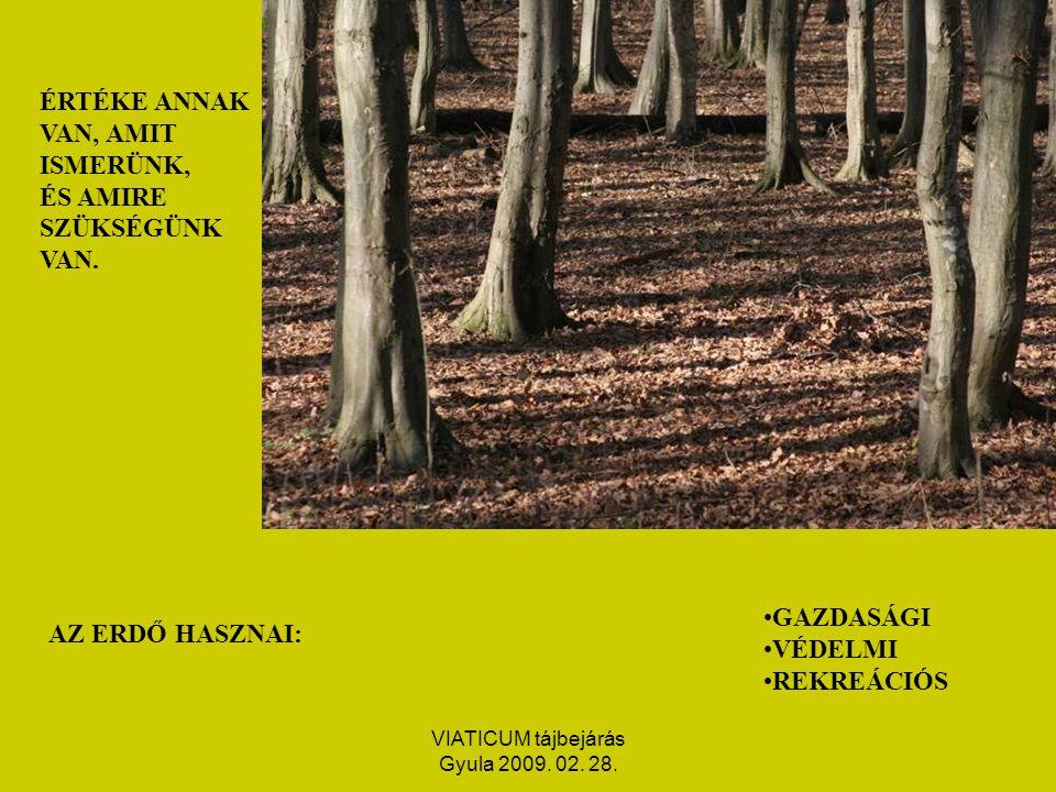 VIATICUM tájbejárás Gyula 2009. 02. 28. ÉRTÉKE ANNAK VAN, AMIT ISMERÜNK, ÉS AMIRE SZÜKSÉGÜNK VAN.