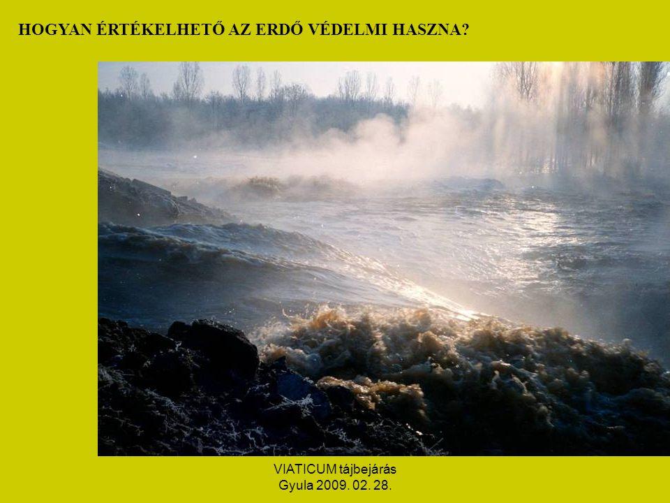 VIATICUM tájbejárás Gyula 2009. 02. 28. HOGYAN ÉRTÉKELHETŐ AZ ERDŐ VÉDELMI HASZNA
