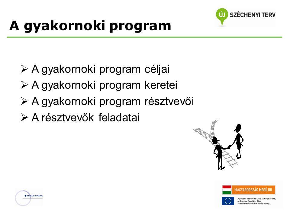 A gyakornoki program  A gyakornoki program céljai  A gyakornoki program keretei  A gyakornoki program résztvevői  A résztvevők feladatai