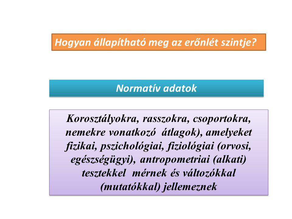 Vizsgálatvezető szerepe Szervezés Kivitelezés megfelelő Kapcsolat a vsz.-el Biztonság Adatok megfelelő rögzítése Felelősség!