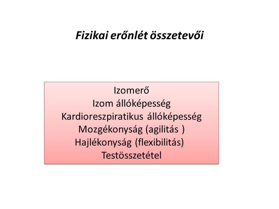 Izomerő Izom állóképesség Kardioreszpiratikus állóképesség Mozgékonyság (agilitás ) Hajlékonyság (flexibilitás) Testösszetétel Izomerő Izom állóképesség Kardioreszpiratikus állóképesség Mozgékonyság (agilitás ) Hajlékonyság (flexibilitás) Testösszetétel Fizikai erőnlét összetevői