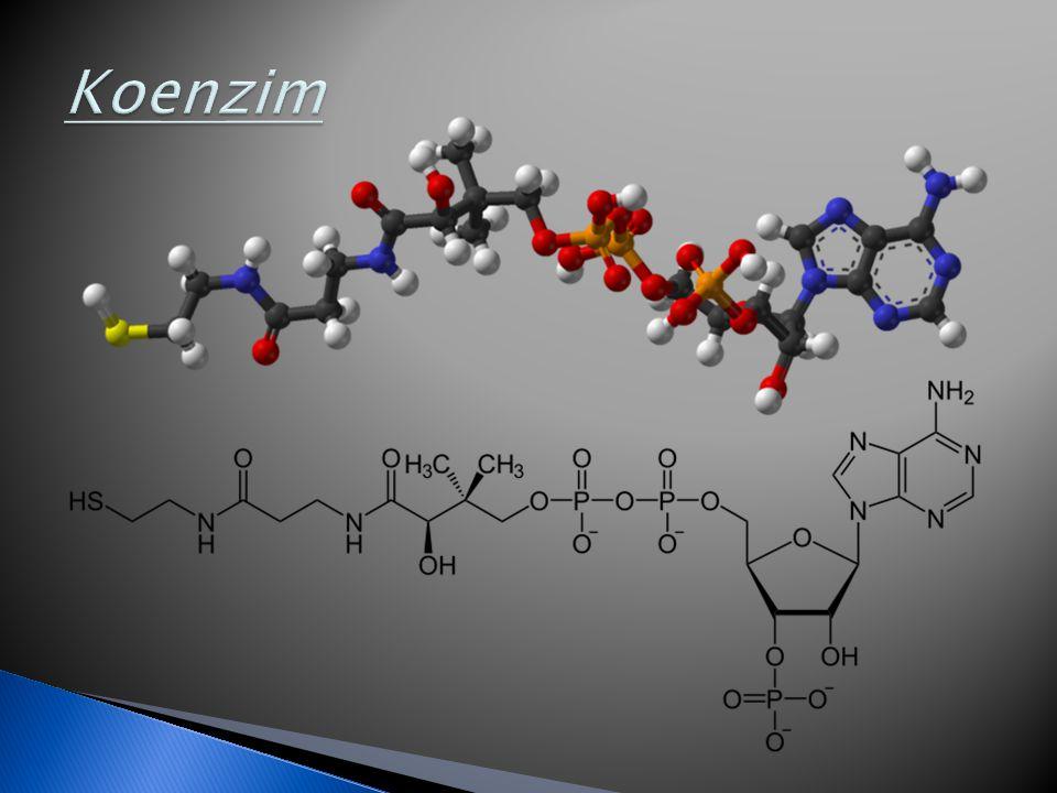  Oxireduktázok  Transzferázok  Hidrolázok  Liázok