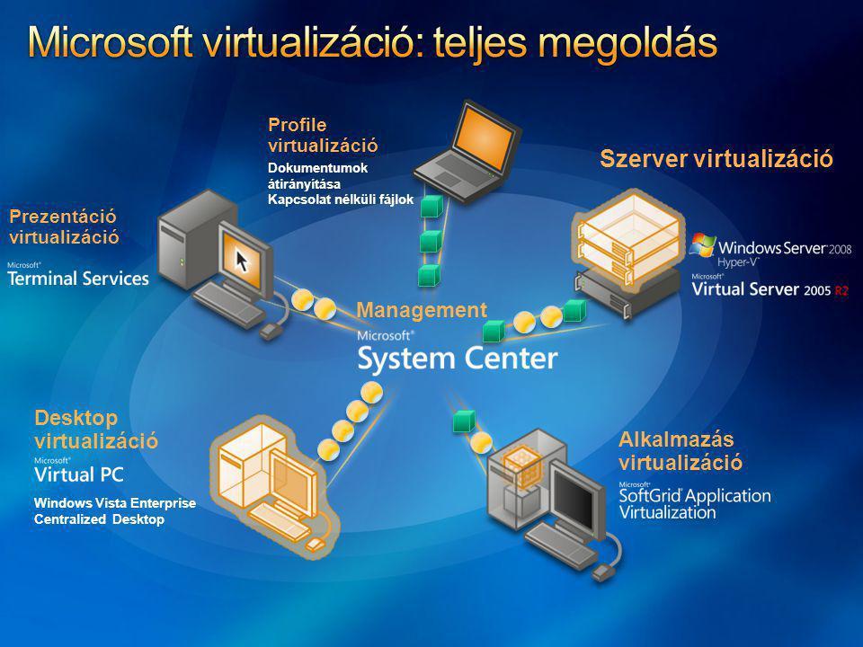 * A profil virtualizáció kifejezést az előadás során bővített tartalommal használom.