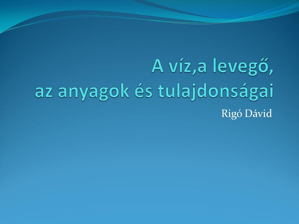 Rigó Dávid