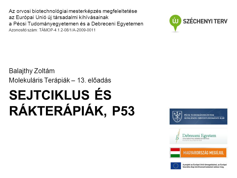 SEJTCIKLUS ÉS RÁKTERÁPIÁK, P53 Az orvosi biotechnológiai mesterképzés megfeleltetése az Európai Unió új társadalmi kihívásainak a Pécsi Tudományegyetemen és a Debreceni Egyetemen Azonosító szám: TÁMOP-4.1.2-08/1/A-2009-0011 Balajthy Zoltám Molekuláris Terápiák – 13.