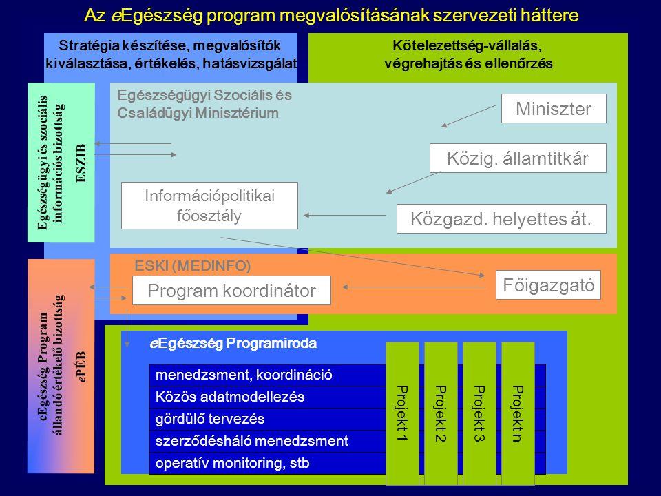 Stratégia készítése, megvalósítók kiválasztása, értékelés, hatásvizsgálat Kötelezettség-vállalás, végrehajtás és ellenőrzés Egészségügyi Szociális és