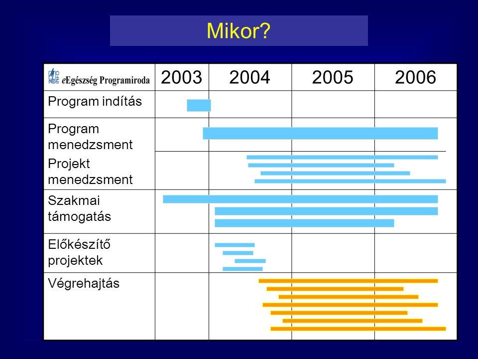 2003200420052006 Program indítás Program menedzsment Projekt menedzsment Szakmai támogatás Előkészítő projektek Végrehajtás Mikor?