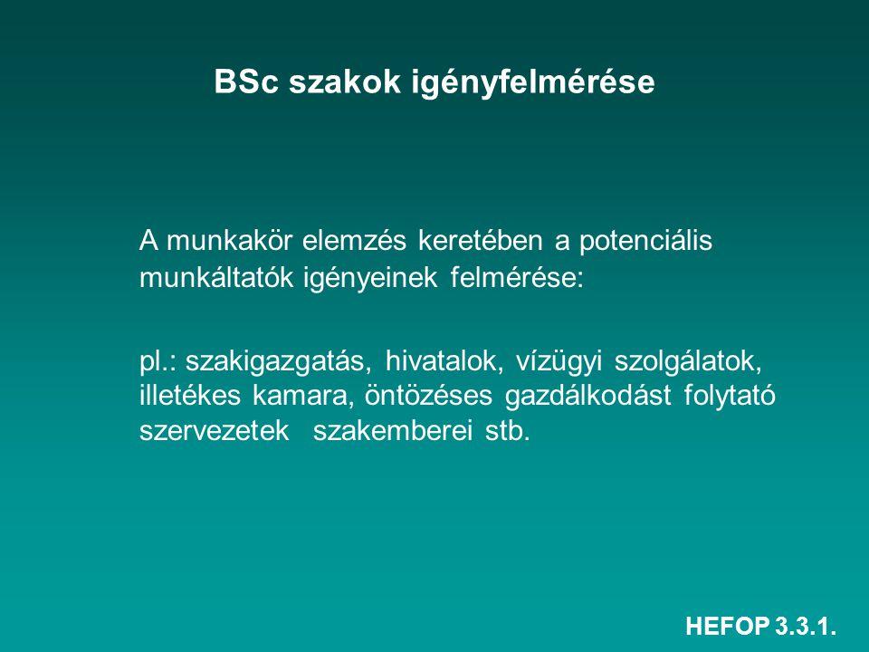HEFOP 3.3.1. BSc szakok igényfelmérése A munkakör elemzés keretében a potenciális munkáltatók igényeinek felmérése: pl.: szakigazgatás, hivatalok, víz