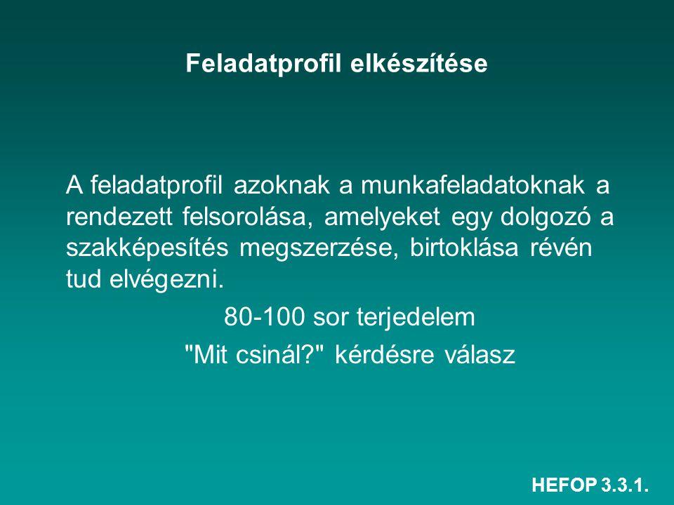 HEFOP 3.3.1. Feladatprofil elkészítése A feladatprofil azoknak a munkafeladatoknak a rendezett felsorolása, amelyeket egy dolgozó a szakképesítés megs