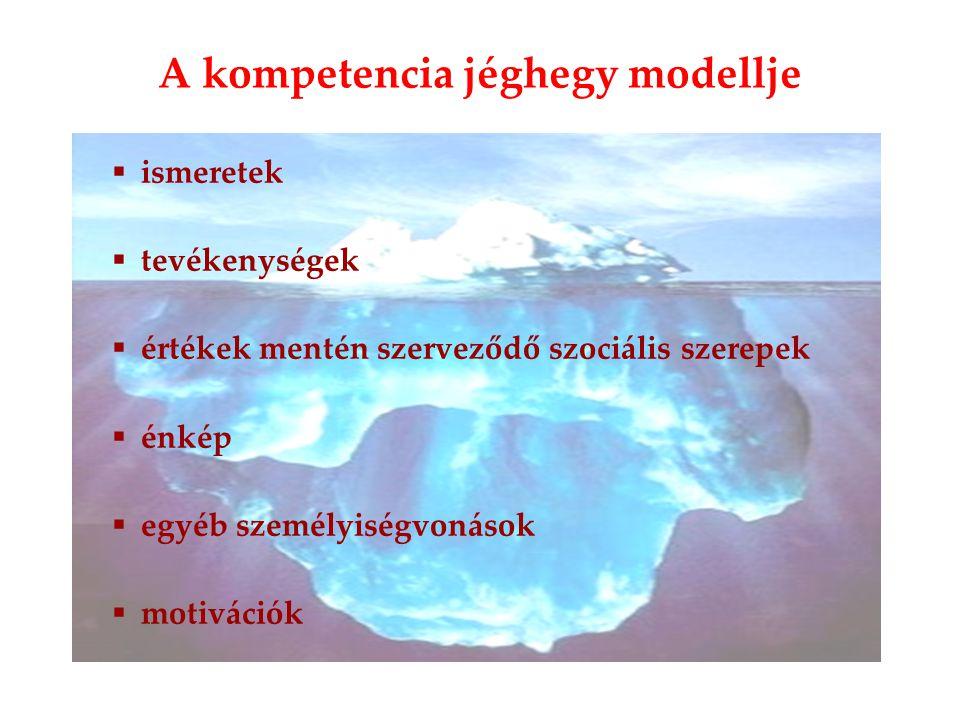  ismeretek  tevékenységek  értékek mentén szerveződő szociális szerepek  énkép  egyéb személyiségvonások  motivációk A kompetencia jéghegy modellje
